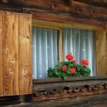 Licht und Lüftung für den Raum: Das Fenster. Foto: neurolle - Rolf / pixelio.de . (660751_original_R_K_B_by_neurolle - Rolf_pixelio.de)